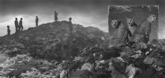 Inherit the Dust, Nick Brandt1