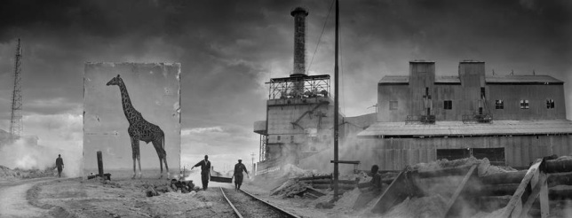Inherit the Dust, Nick Brandt2
