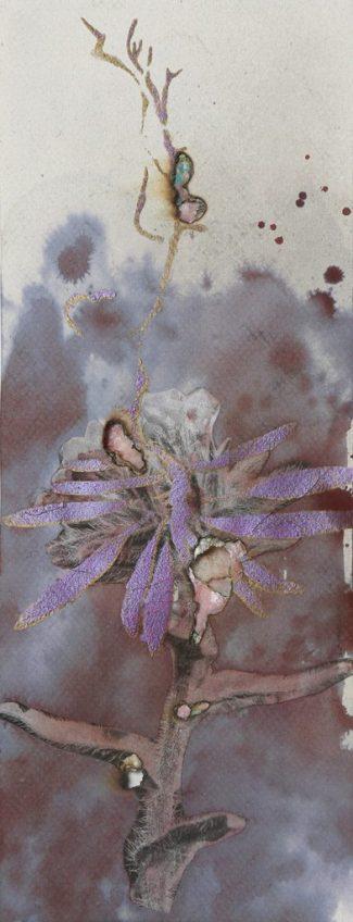 Inumaru-esquis-arc-en-ciel-des-plantes