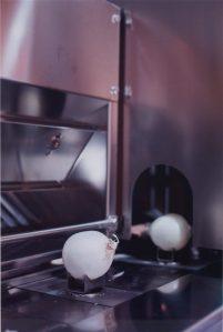 Tillmans-Onion-2010